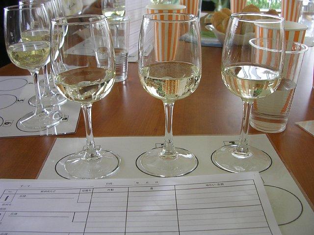 Wine000