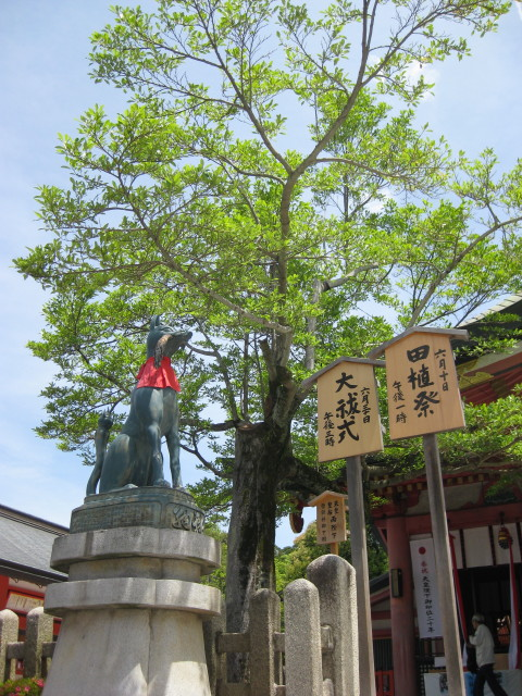 Kyoto_0003